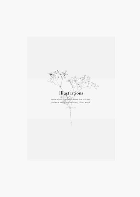 Botanische set van 4 - A5 (4)