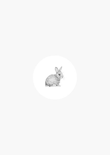 Sticker roll - rabbit