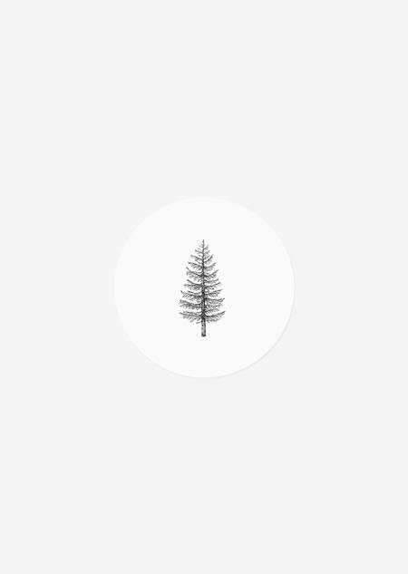 Sticker rol - dennenboom