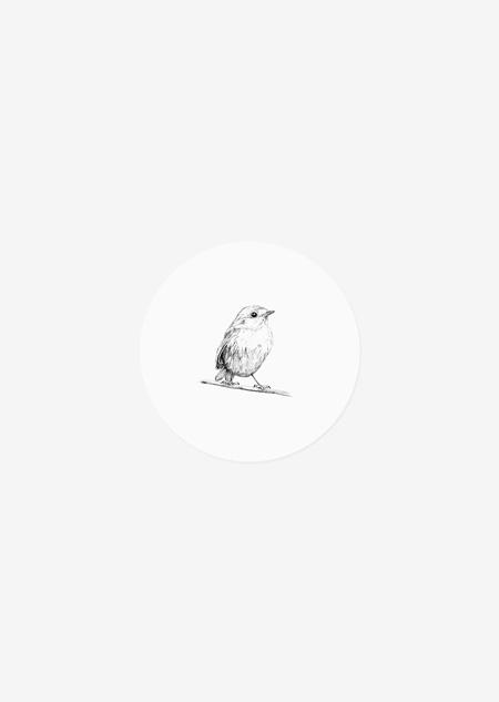 Sticker roll - robin