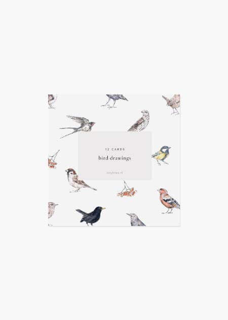 Birds set of 12