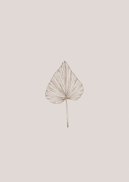 Dried palm leaf (beige)