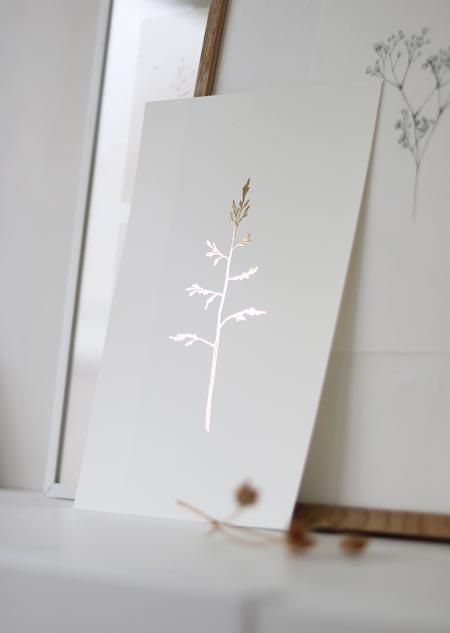 Gras - goudfolie A4 poster