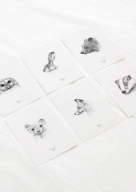 Dieren set van 6