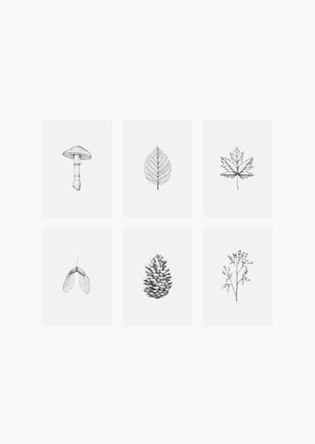 Autumn set of 6