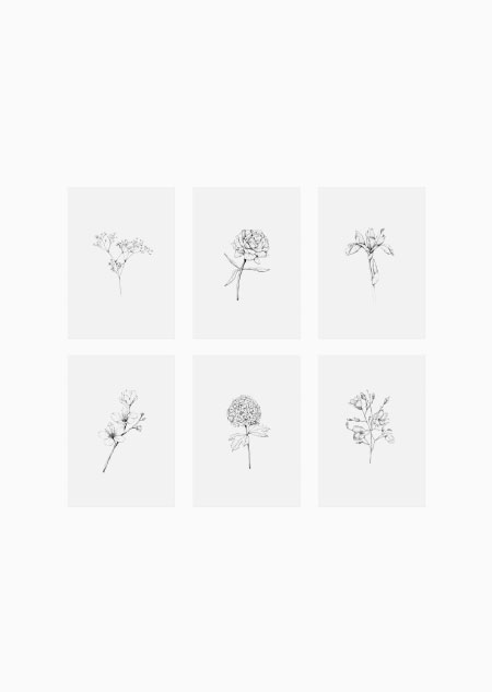 Flowers set of 6