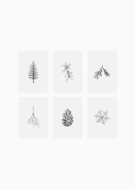 Winter set van 6