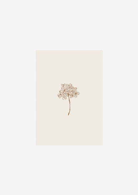 Label - 10x hortensia