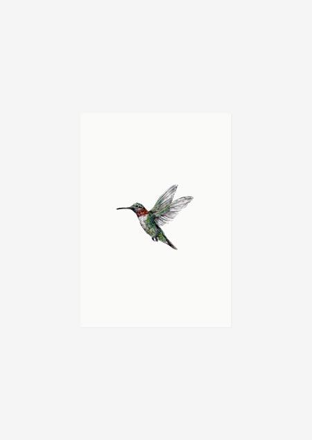 Label - 10x kolibrie