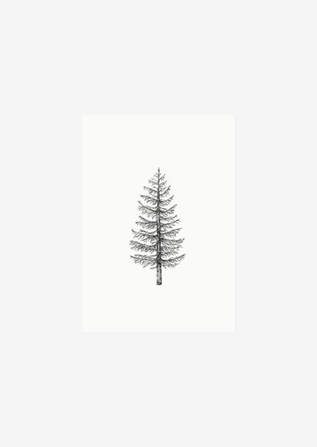 Label - 10x dennenboom