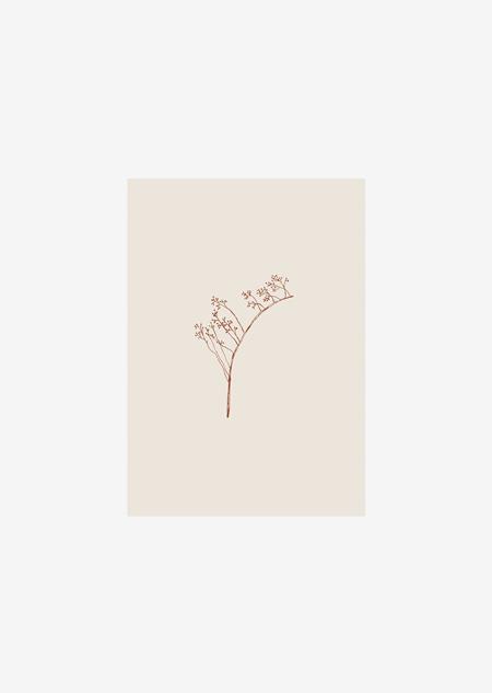 Label - 10x rozenbottel (beige)