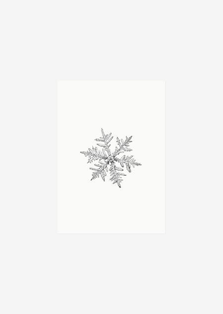 Label - 10x sneeuwvlokje
