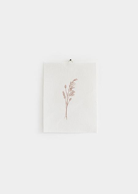 Katoenen poster - droogbloemen (small)
