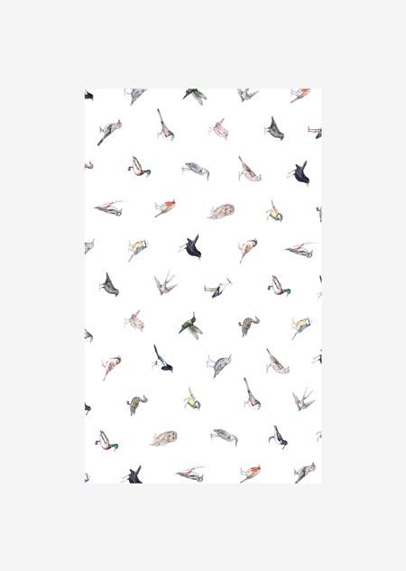 Inpakpapier - vogels